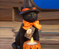 Black Cat with Pumpkin Votive - Sitting