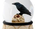 Raven on Skull in Water Globe